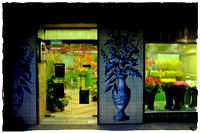 The Florist of Seville - available for purchase on fine art archival photo paper