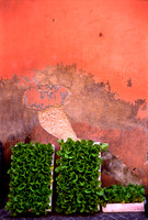 Pink Wall, Umbria